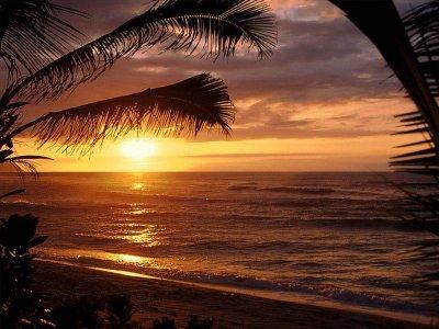 CASA DE BEACH SURFING WAVES 4