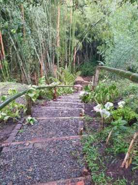 paraiso natural, cabañas,rio ,lago y senderos ecologicos 5