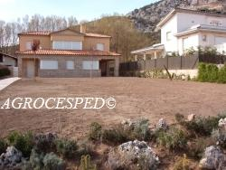 Agrocesped. Césped natural en tepes. 2